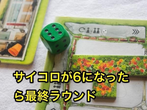 cottagegarden170316-11_600px.jpg