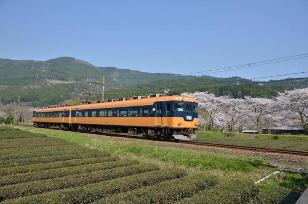 大鐵16000系電車(2017年4月14日)