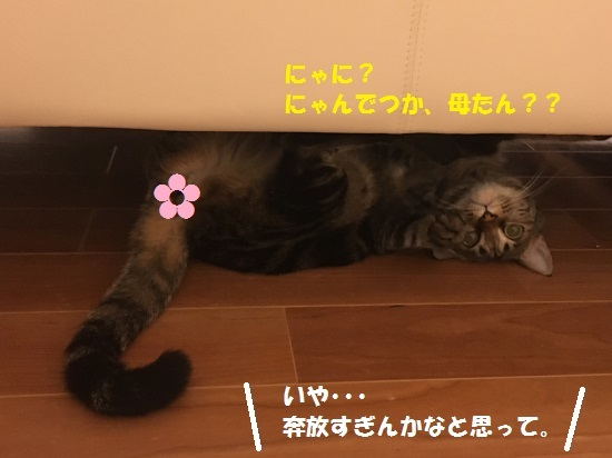 2017円2月16日②