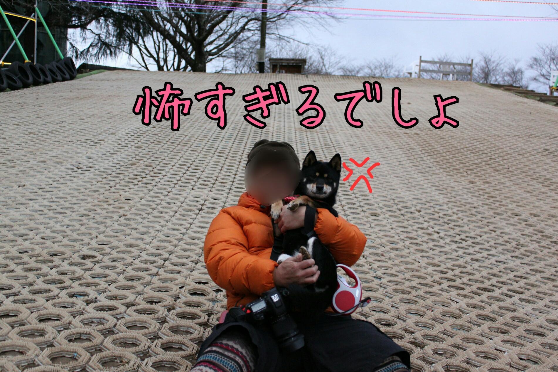 20170312104034446.jpg