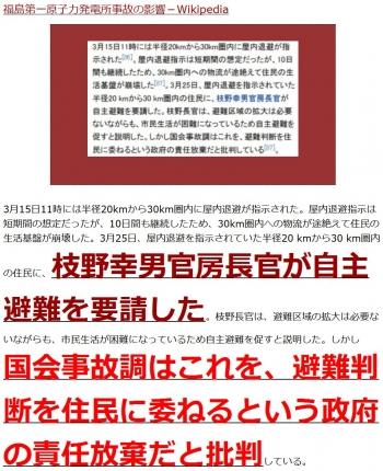 ten福島第一原子力発電所事故の影響