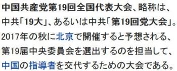 wiki中国共産党第19回全国代表大会