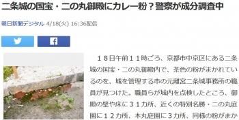 news二条城の国宝・二の丸御殿にカレー粉?警察が成分調査中