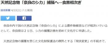 news天然記念物「奈良のシカ」捕獲へ…食害相次ぎ