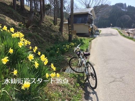16水仙街道バイクラン奉納温泉まで (520x390)
