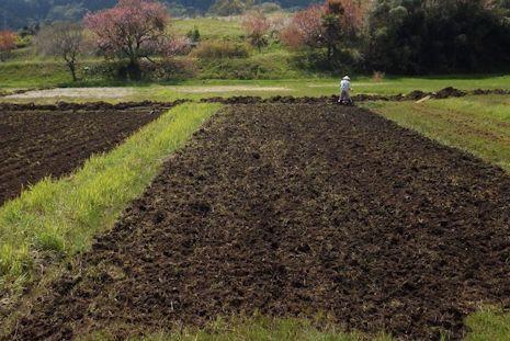 田おこしで田植えの準備