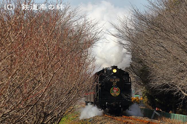 20160207北真岡5D3