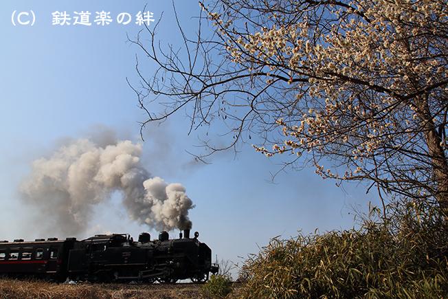 20160227折本5D3