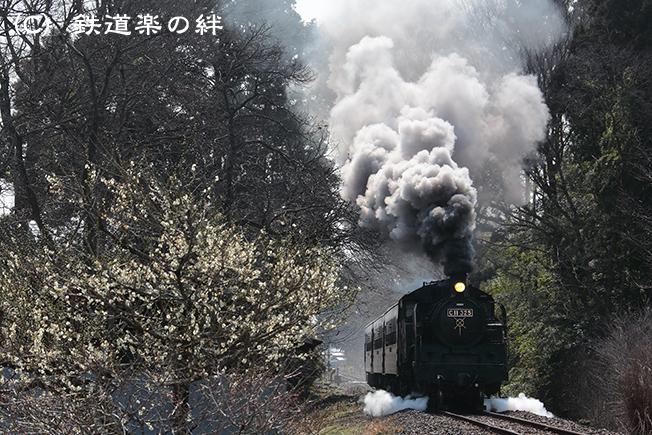 20160227多田羅045D3