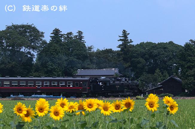 20110814北真岡5D2