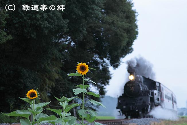 20110820真岡5D2