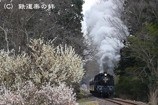 20170401多田羅031DX2
