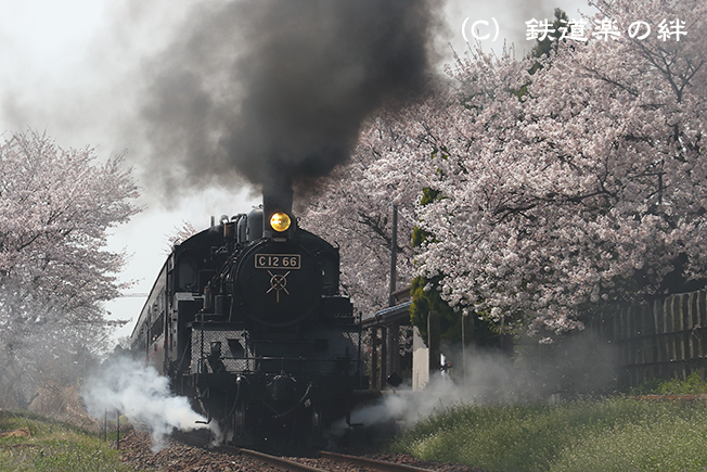 20170415寺内041DX2
