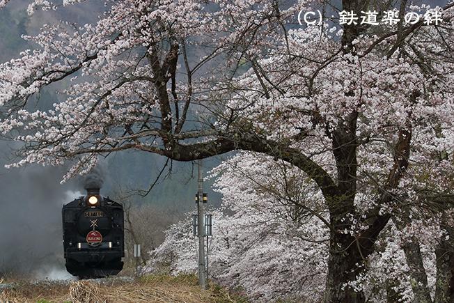 20170422上野尻011DX2
