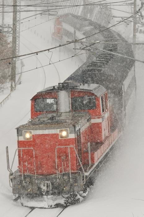 DSC_9647.jpg
