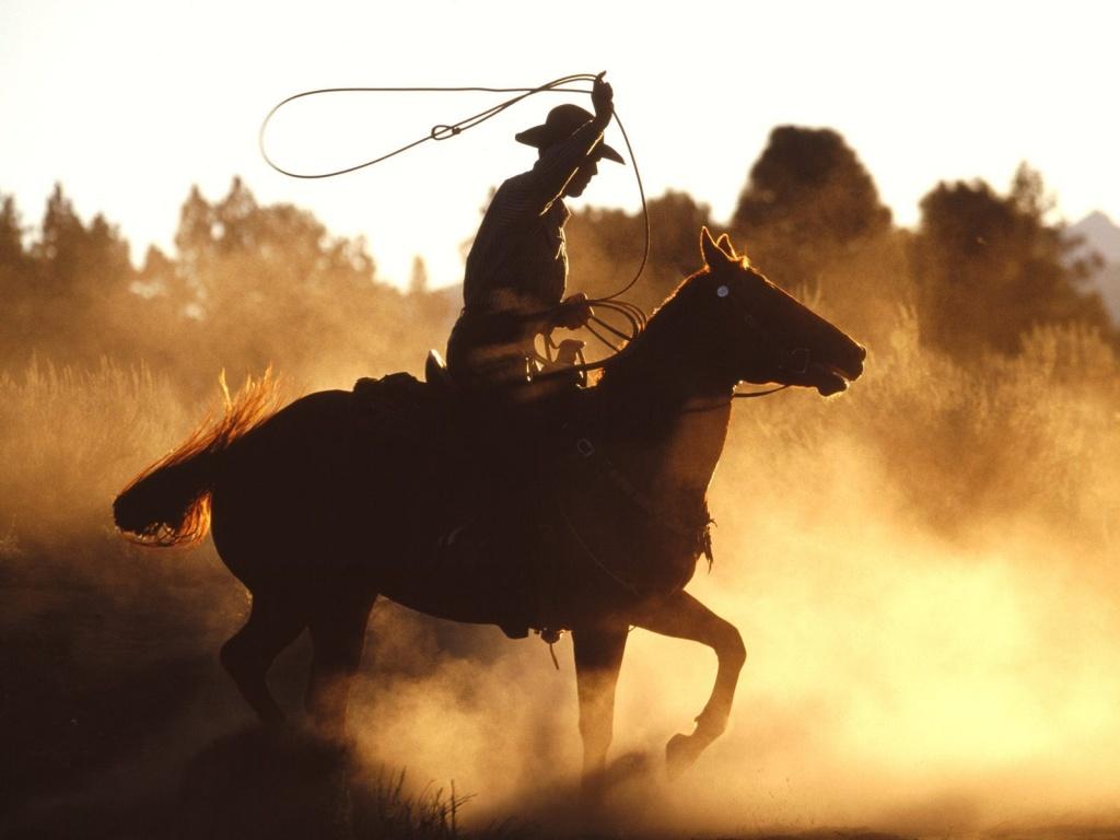 ws_Cowboy_with_lasso_1024x768 (2)