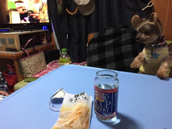 003みのりの郷夜