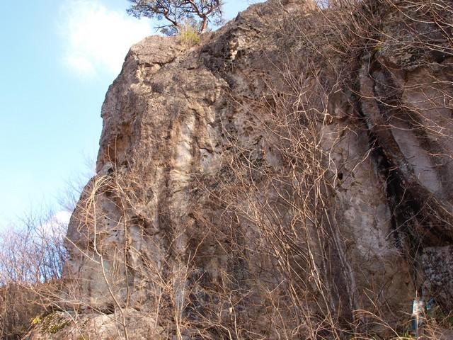 s02猿岩1