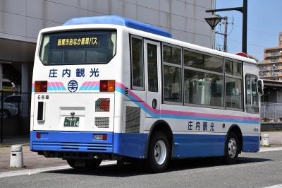 DSC_0028x.jpg
