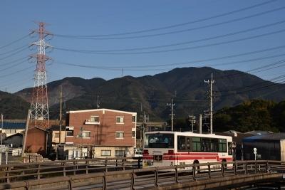 DSC_0093x.jpg