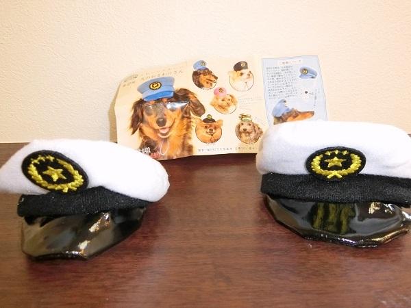 CIMG1629帽子