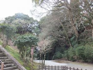 飫肥城/堀切(松尾丸⇔旧本丸)