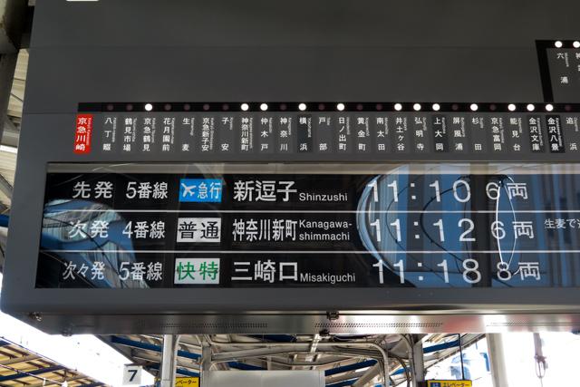 三浦鮪1(1)