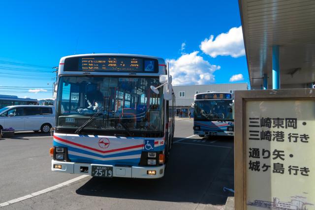 三浦鮪1(19)
