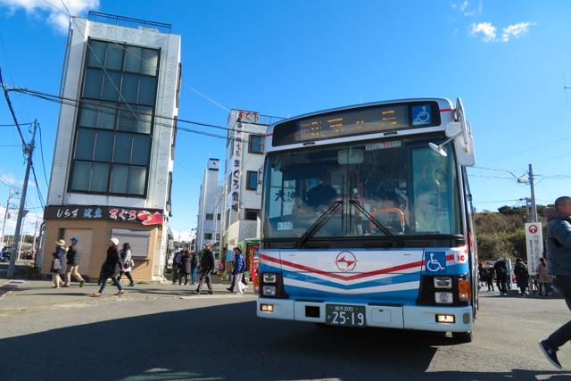 三浦鮪2(10)
