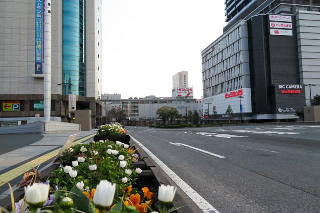 広島4(1)