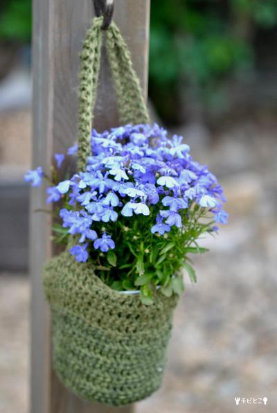 チビとこお花