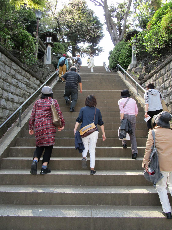 大江戸散歩隊1