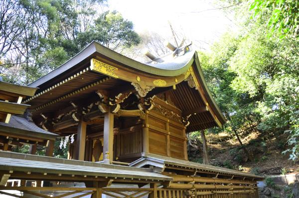 貫井神社本殿