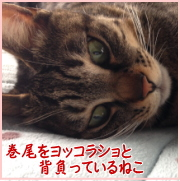 o_bn01.jpg