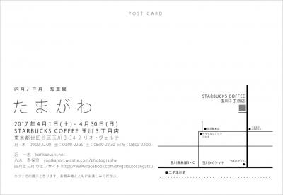 dm_2.jpg