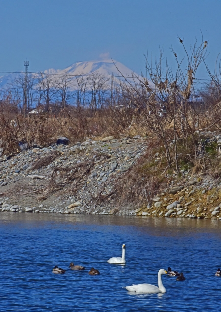浅間山6 DSC_0273