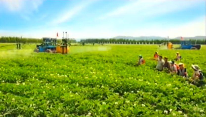北鮮 共同農場