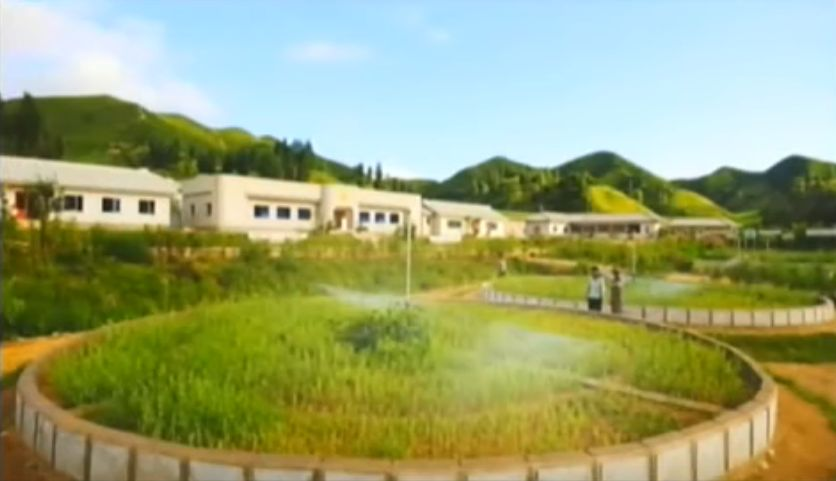 北鮮 養苗場