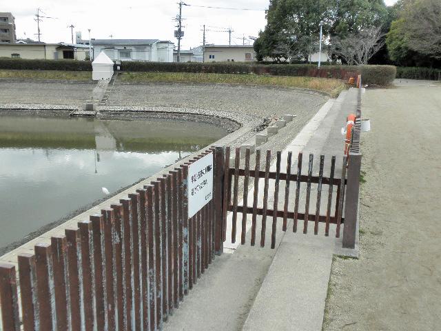 芦原公園釣り堀撤去1702 (4)