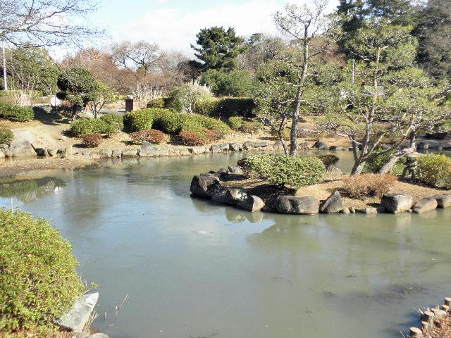 服部緑地日本庭園1702 (1)