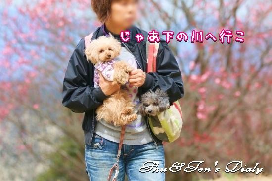 006aIMG_2007.jpg