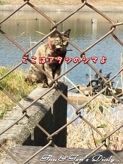 008aIMG_4183.jpg