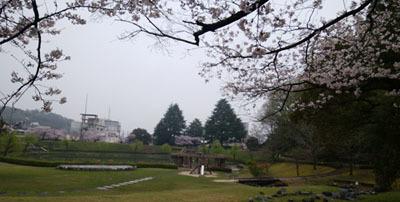 408 長山公園散歩4