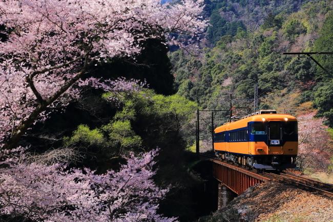 鉄道写真1651