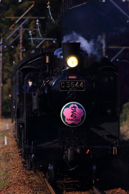 鉄道写真1669