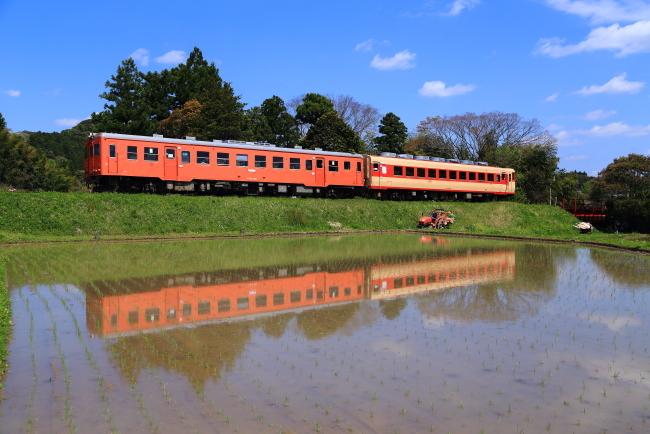 鉄道写真1733