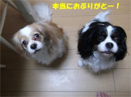 01_convert_20170309175516.jpg