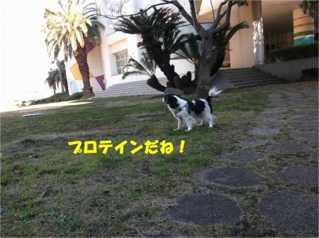 02_convert_20170216201321.jpg