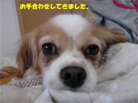 02_convert_20170223172023.jpg
