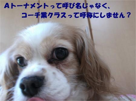 04_convert_20170405181931.jpg